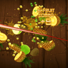 Fruit Ninja tiempo