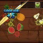 fruit ninja en la pc