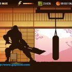 Imagenes Shadows Fight para PC (5)